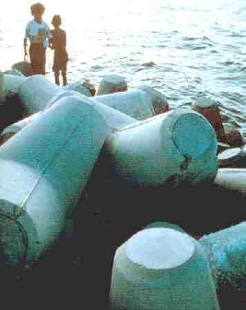 Maldives, Biorock, shoreline, protection, erosion, control, mineral, accretion