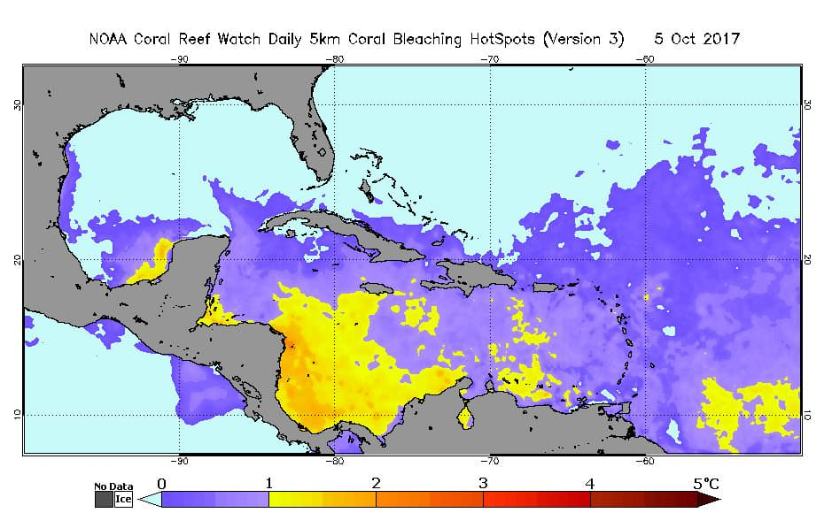 Coral bleaching is now starting over a large part of the Caribbean