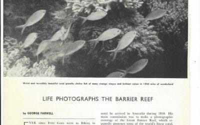 Ninety years of change on the Great Barrier Reef