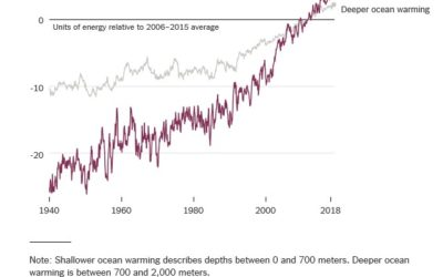 Global ocean warming accelerates threats to coral reefs, need to remove CO2