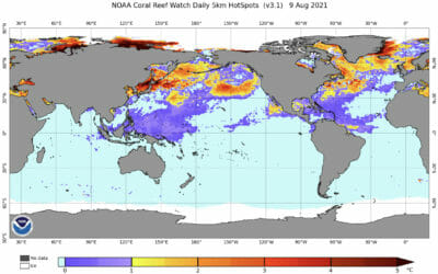 IPCC IGNORES CORAL REEF COUNTRIES AGAIN